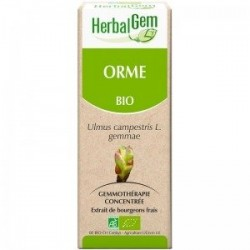 Olmo Gemmoderivato 15ml