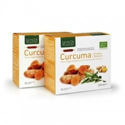 Curcuma + Cicoria + Zenzero